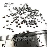 СТРАЗЫ  Labrador  (150шт)   DIA 016